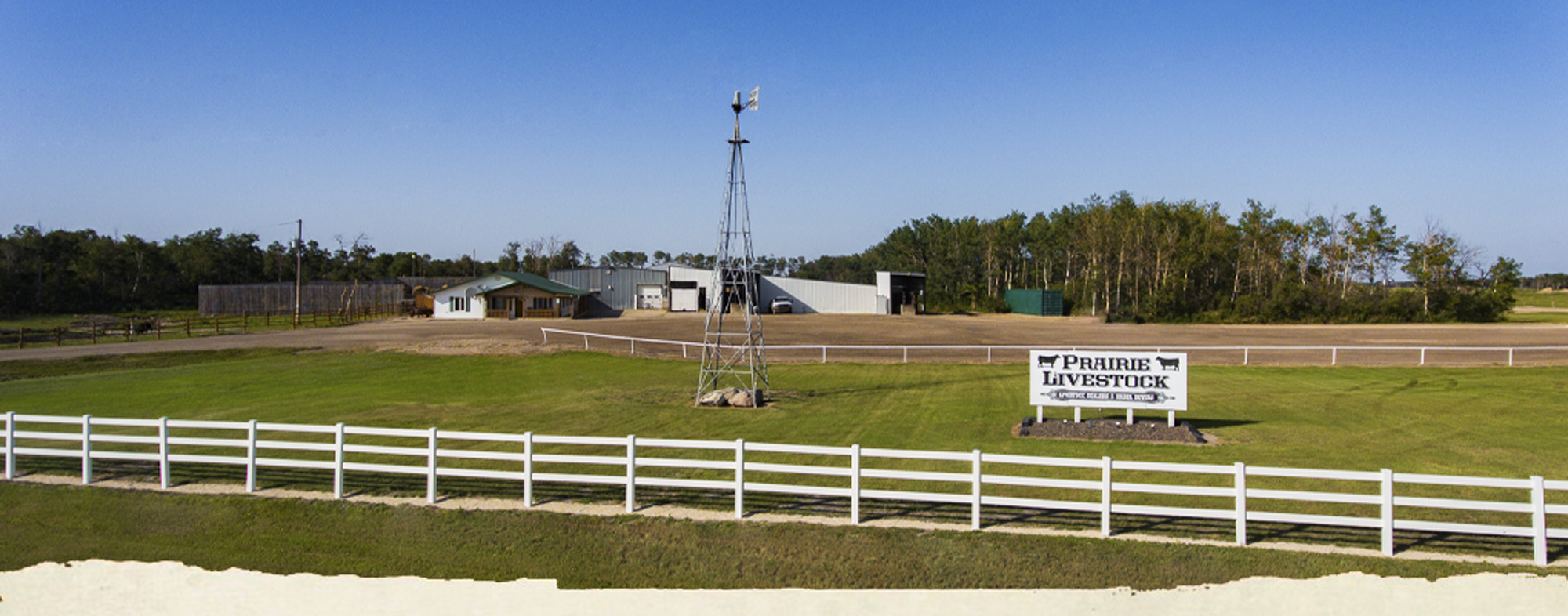 prairie-livestock-banner-11